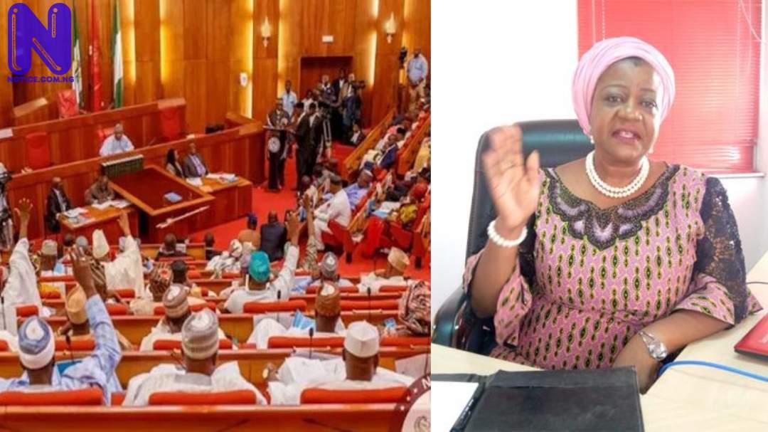 Investigate claims Delta has no INEC commissioner rep- Group to Senate - Lauretta Onochie 2ZUEYBFE