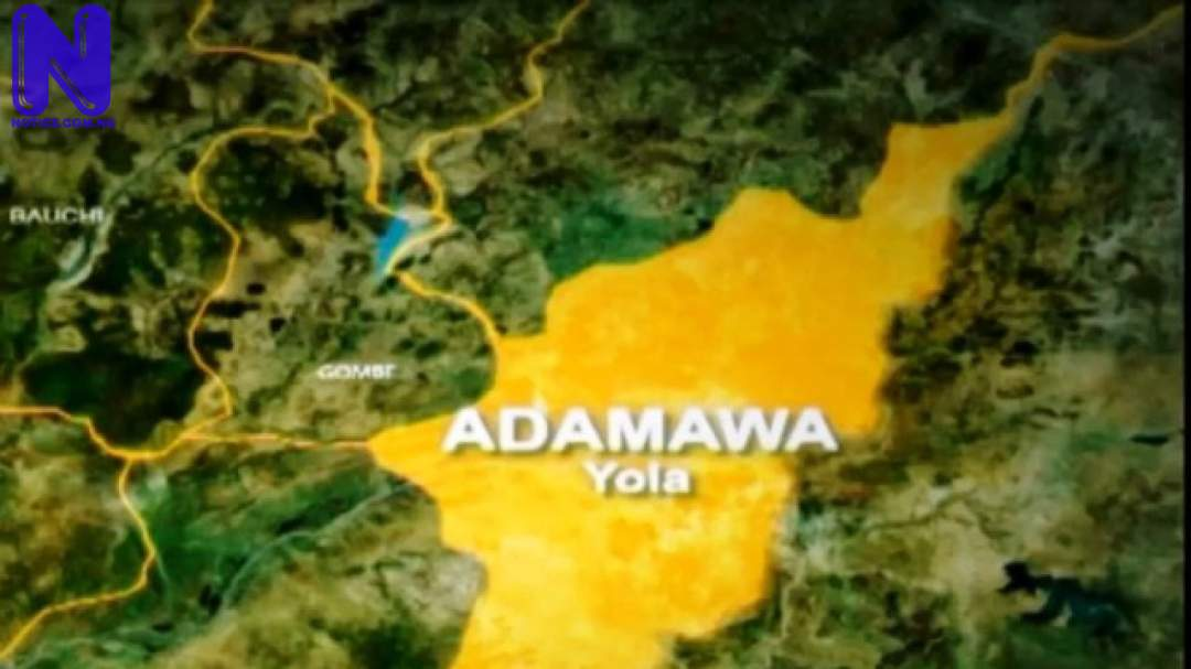 Rapists in Adamawa State to face life in prison if convicted ADAMAWA105809