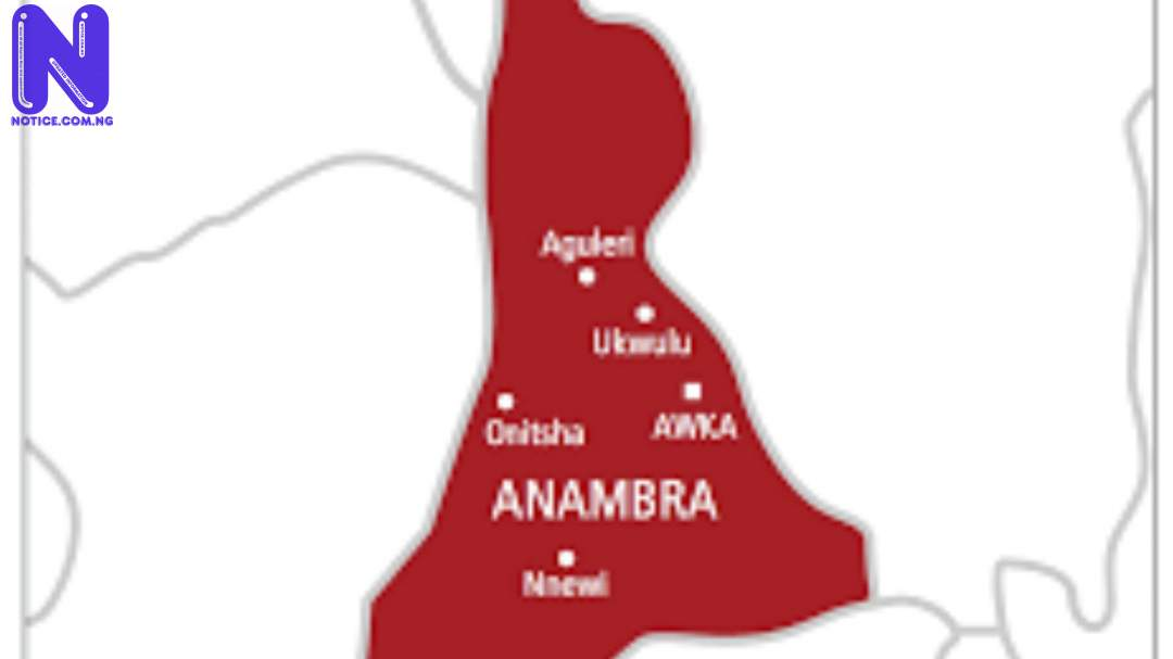 School proprietor's 11 dogs maul toddler to death in Anambra ANAMBRA50305