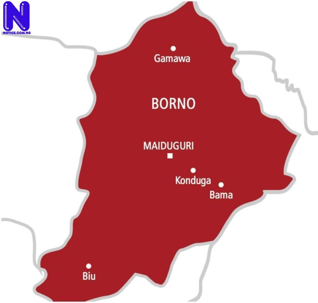 Terrorists set military base on fire in Borno BORNO-STATE-MAP