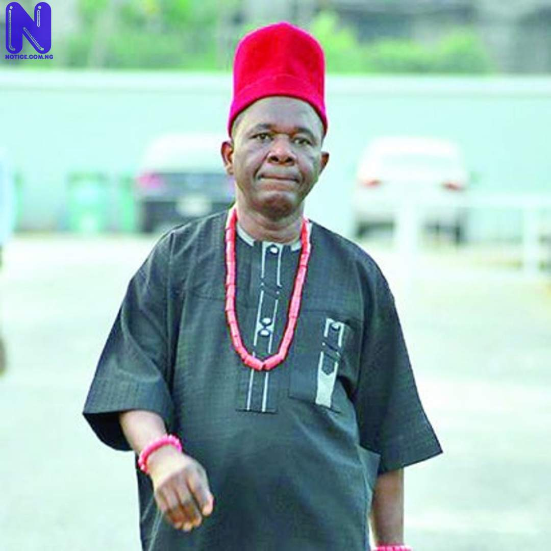 Nollywood actor, Chiwetalu Agu released from DSS detention CHIWETALU-AGU-1110498