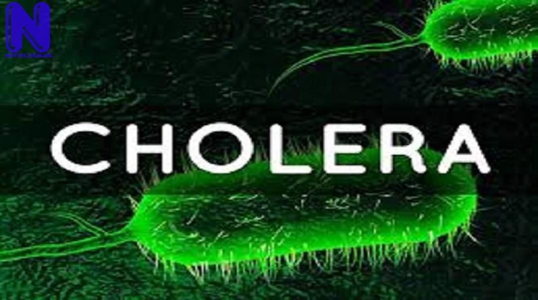 Over 100 die of cholera in Niger CHOLERA-CHOLERA51986