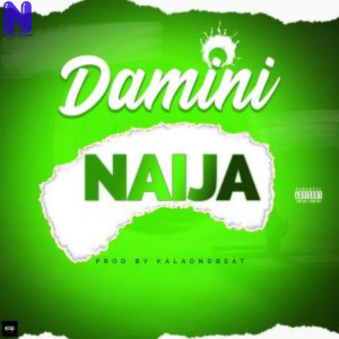 Download Music Mp3: Damini - Naija DAMINI NAIJA 9JAFLAVER