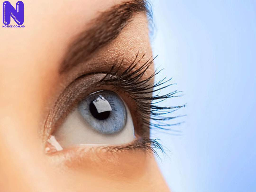 80 percent of visual problems avoidable – Optometrists - World Sight Day EYE-CARE238792