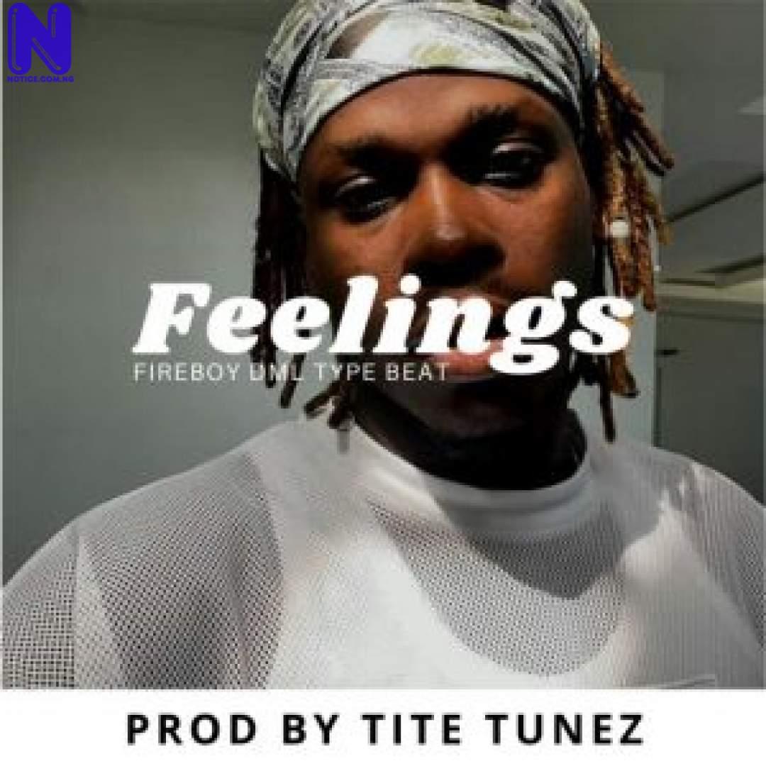 Download Freebeats: Feelings - Fireboy DML Type Beat (Prod By Tite Tunez) FEELINGS 9JAFLAVER-300X300
