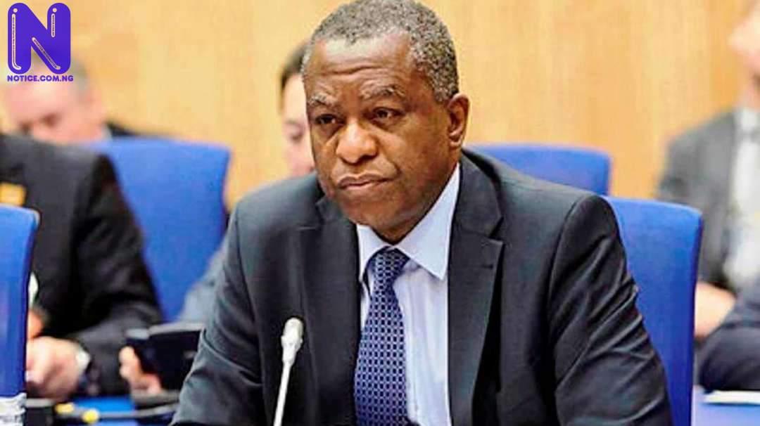 Nigeria adopts policy for citizens abroad GEOFFREY-ONYEAMA