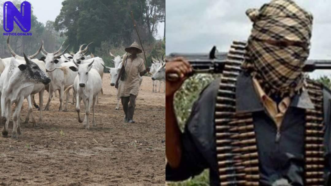 Residents flee as bandits loot shops, rustle 250 cows in Niger community HERDSMEN-BANDITS