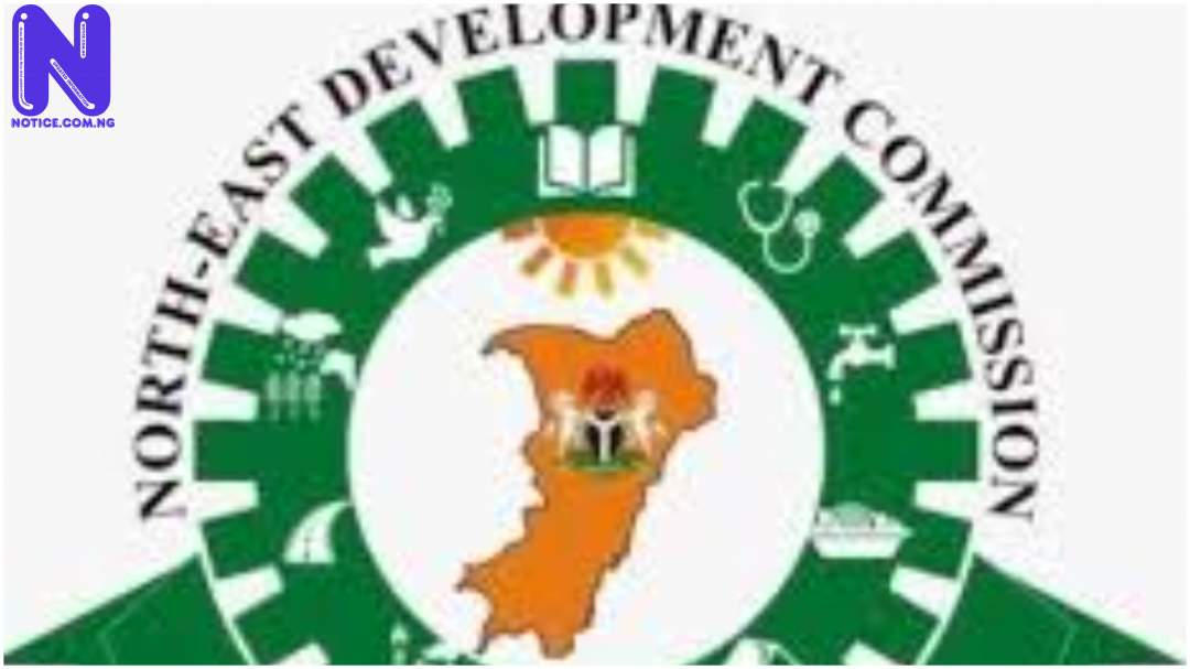 NEDC supports Geidam IDPs with food items, others - Boko Haram IDP