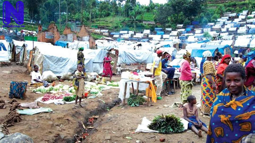 Benue IDP camp records 200 cases of malaria as residents decry lack of shelter, drugs IDP91081