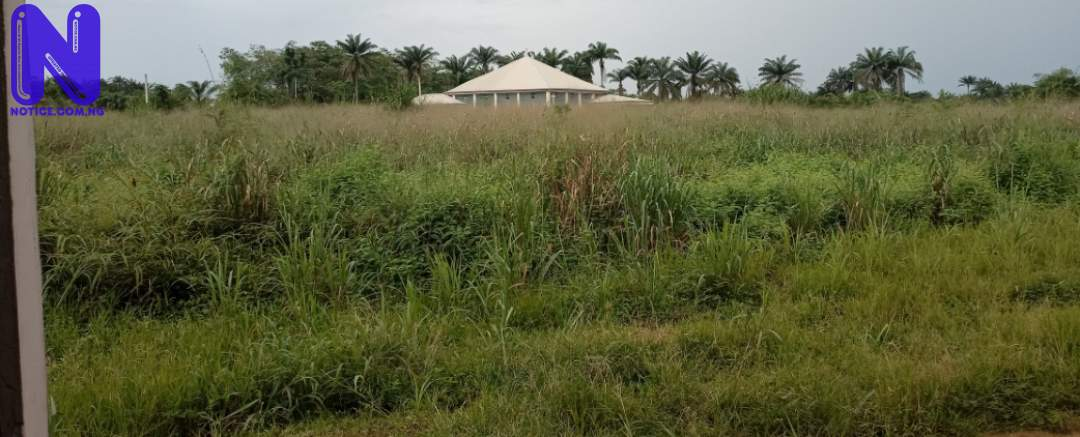 Weeds, reptiles take over abandoned NNPC, SEPLAT 200-bed infectious diseases centre in Imo IMG 20210921 115442 740420478
