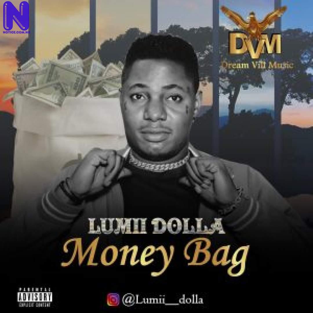 Download Music Mp3: Lumii Dolla – Money Bag (Prod By Emmystrings) LUMII DOLLA MONEY BAG 9JAFLAVER