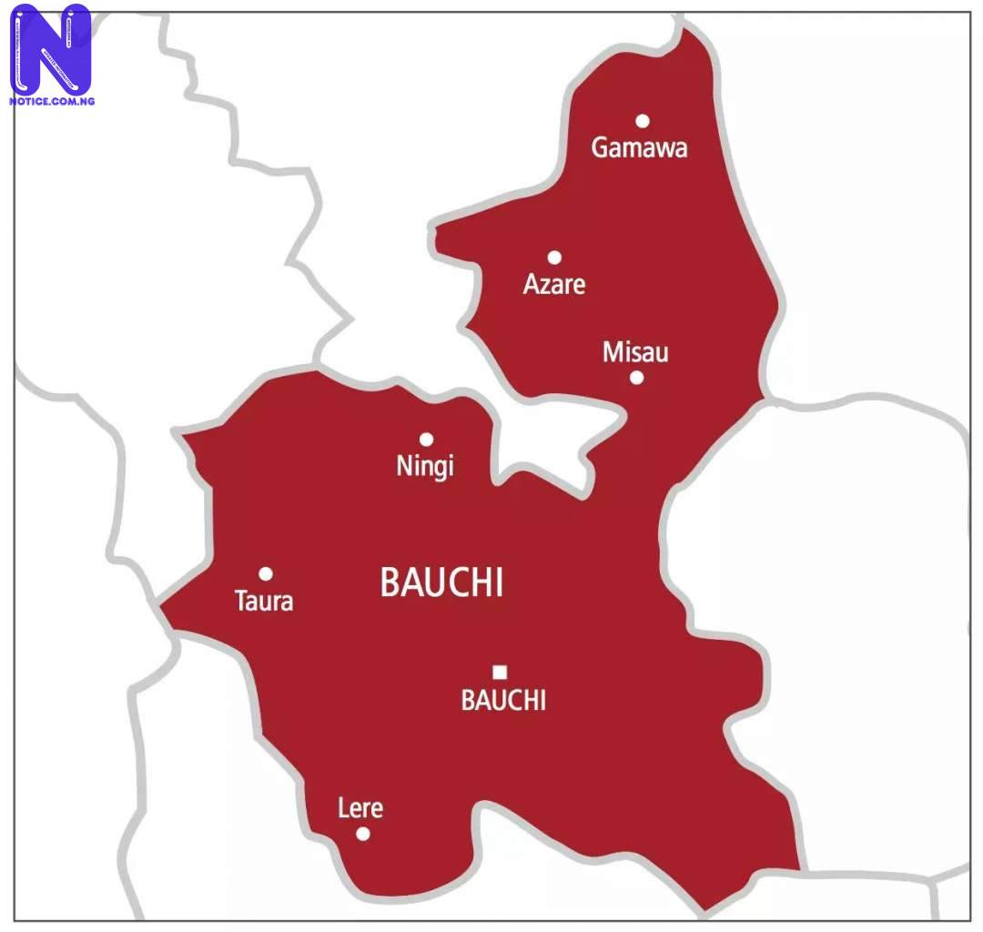 Patients stay off Bauchi hospitals despite resident doctors' suspended strike MAP-OF-BAUCHI-STATE