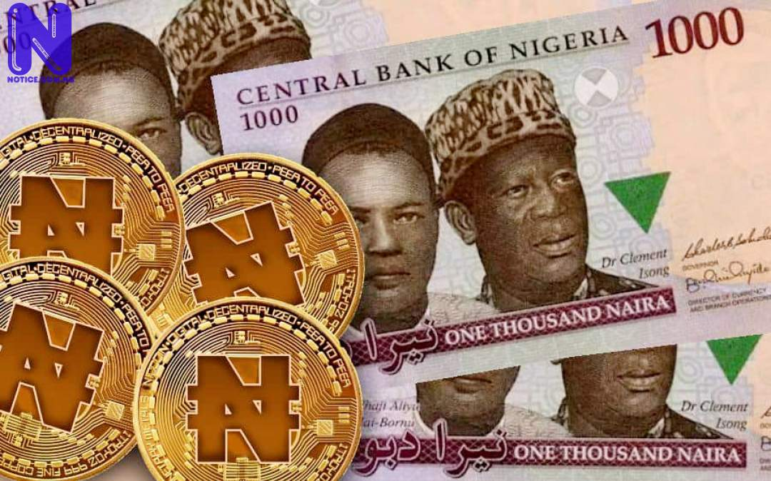 Things to know as CBN launches Nigeria's digital currency - E-Naira NAIRA180993