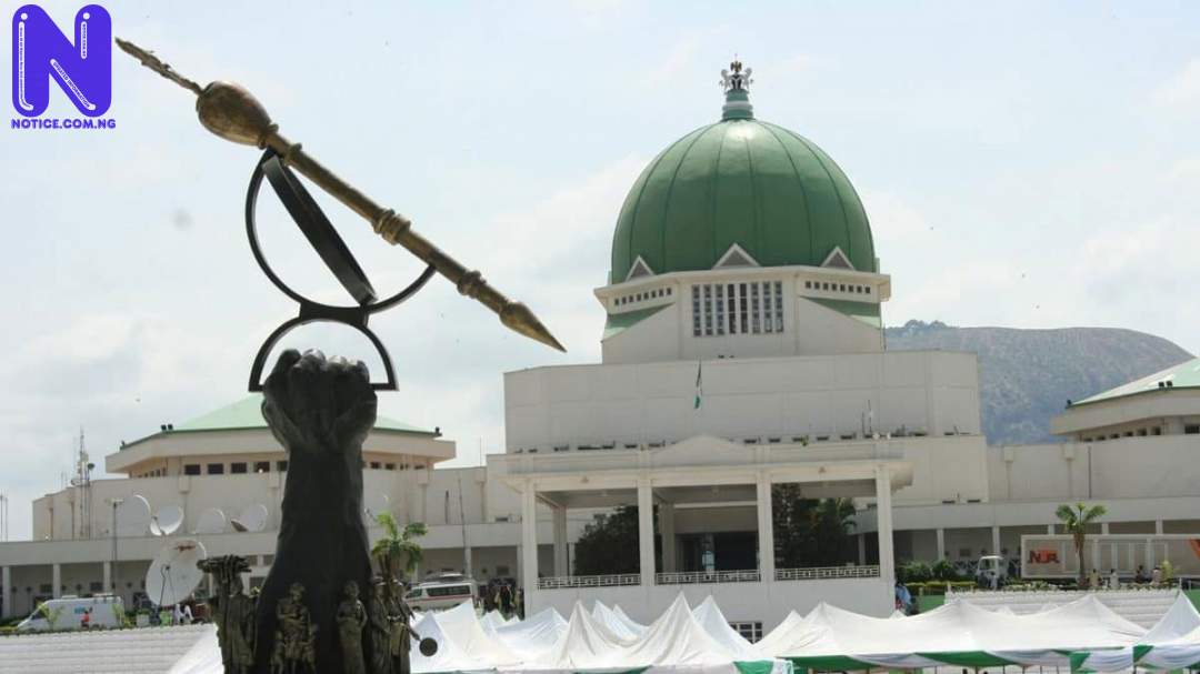 More reactions trail exclusion as Nigerian People berate NASS - E-transmission of election results NATIONAL-ASSEMBLY-NASS55861