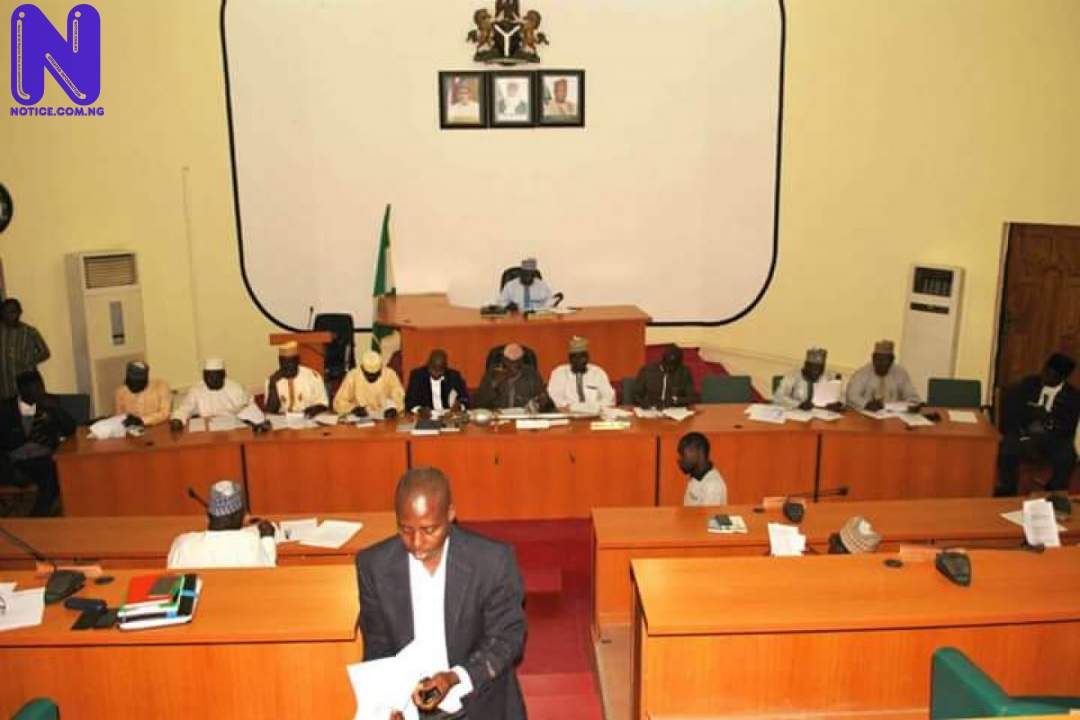 Niger lawmakers pass N60.7bn for 2021 - LGs budget NIGER-HOUSE-OF-ASSEMBLY-1200X801-196356