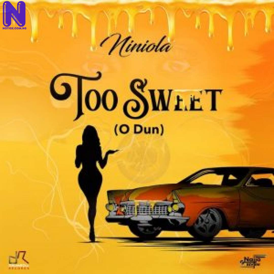 Download Music Mp3: Niniola - Too Sweet (O Dun) NINIOLA-300X30020545