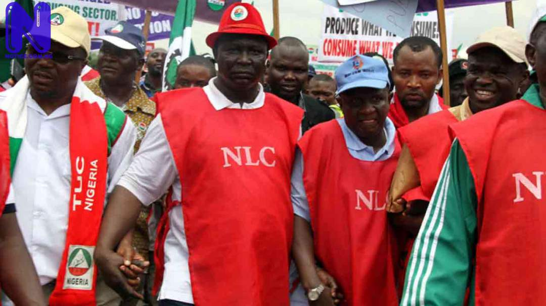 Many Adamawa workers do not have offices – NLC - EndSARS destruction NLC
