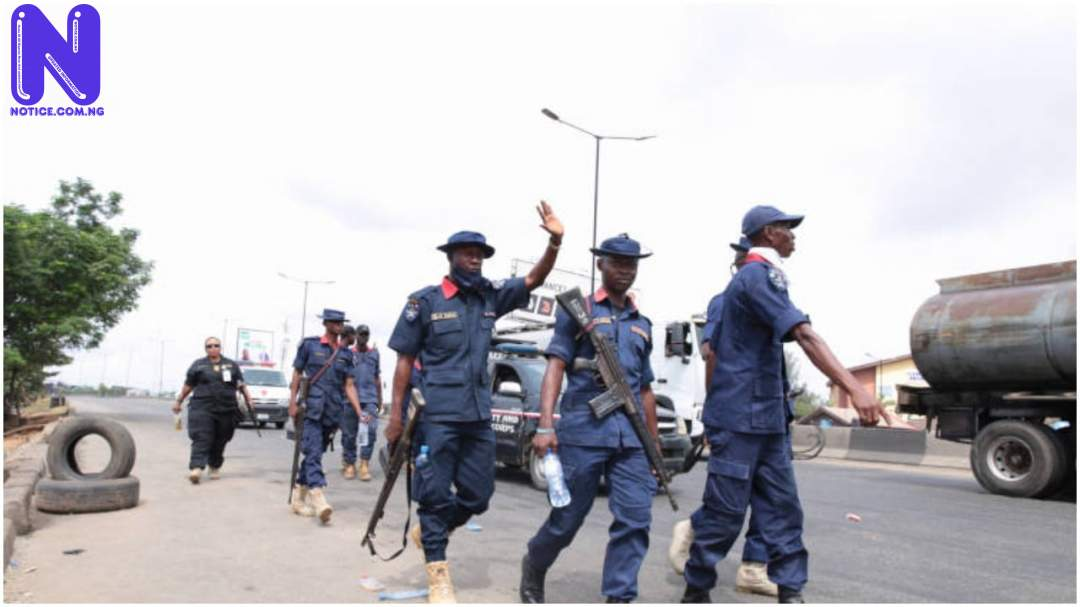 Katsina: NSCDC arrests two suspects for drug peddling, cattle rustling - Insecurity NSCDC95690