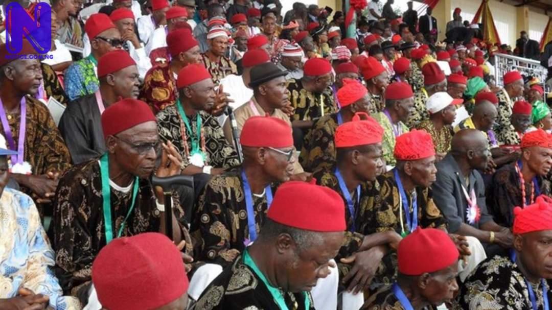 Ohanaeze youths back Enugu West on governorship slot - 2023 OHANAEZE-2