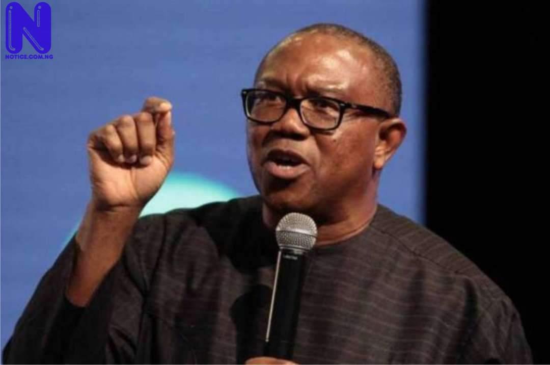 Seek foreign help, Nigeria becoming failed state – Peter Obi tells Buhari PETER-OBI-2