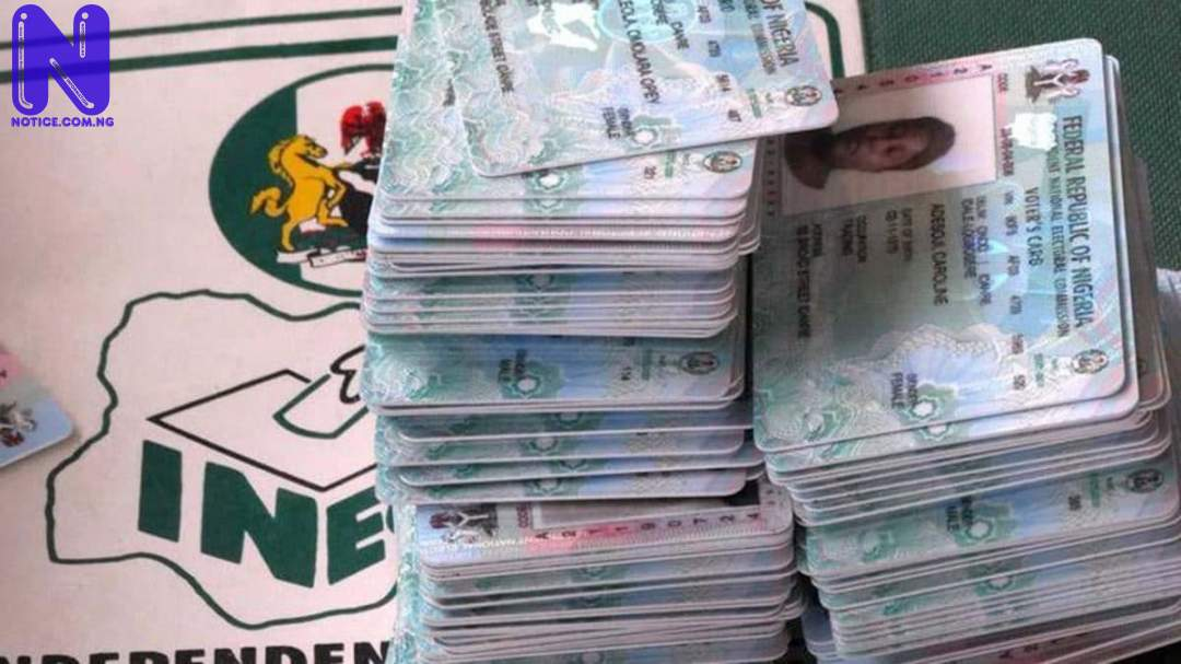 14,130 persons register online in Rivers - PVC PVC96472