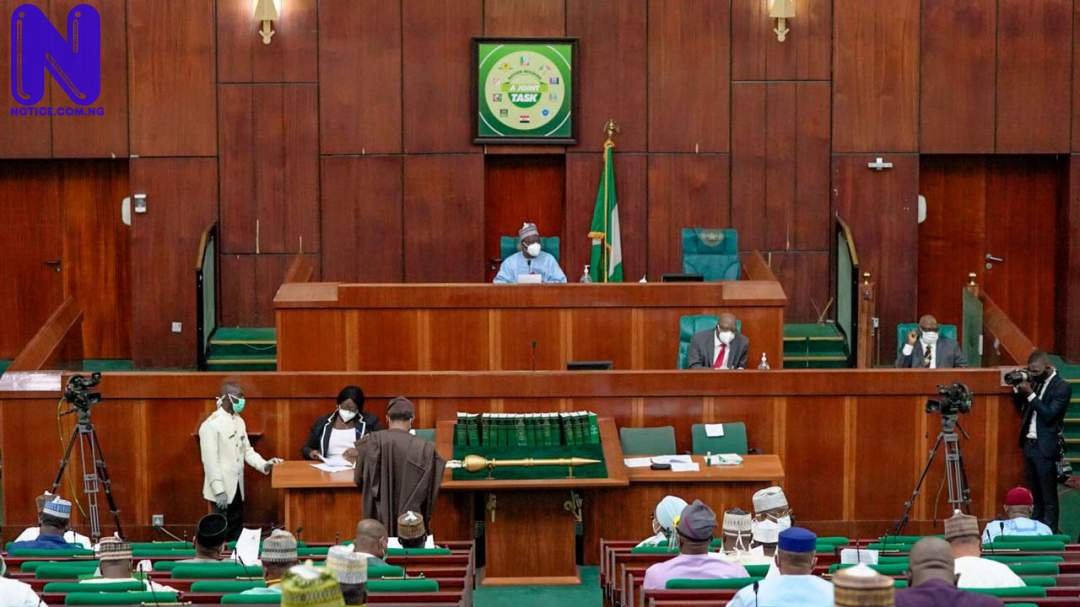 Compulsory Vocational Studies Bill passes second reading in House of Reps REPS-1