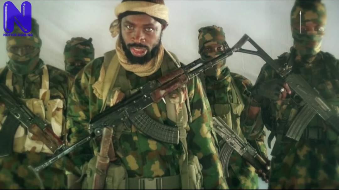 Shekau appoints Muhammad as Boko Haram war commander, kills predecessor, Modu's son SHEKAU