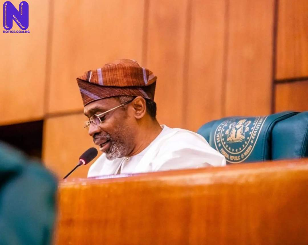 SPEAKER-OF-THE-HOUSE-OF-REPRESENTATIVES-FEMI-GBAJABIAMILA