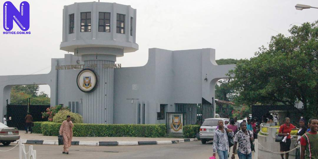 University of Ibadan governing council shortlists eight professors for VC position UNIVERSITY-OF-IBADANUI210082