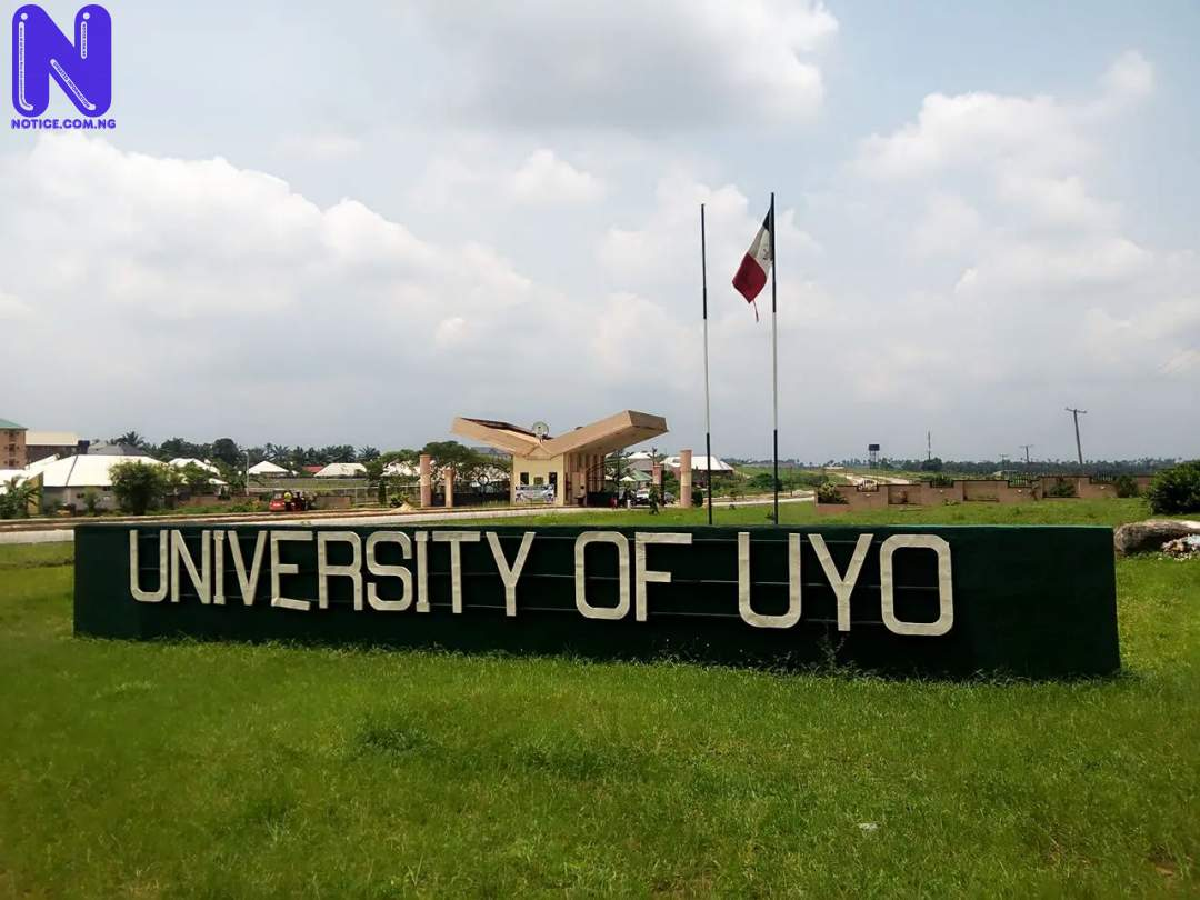 Uyo varsity traders lament demolition of shops UYO